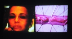 Reflections on the Brave New World (2008, 10min, 16mm & Super 8mm film, collaged sound & live intervention 8 transferred to DV)